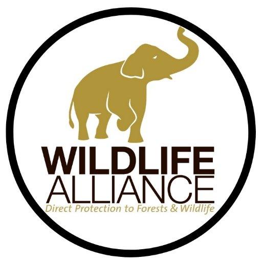 Wildlife Alliance