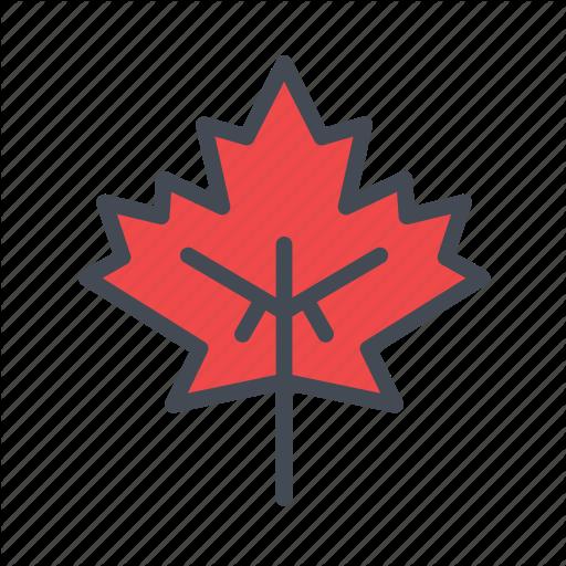 Autumn, Fall, Leaves, Maple, Maple Leaf, Nature Icon