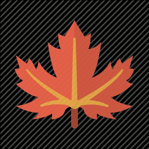 Canada, Leaf, Maple, Nature Icon