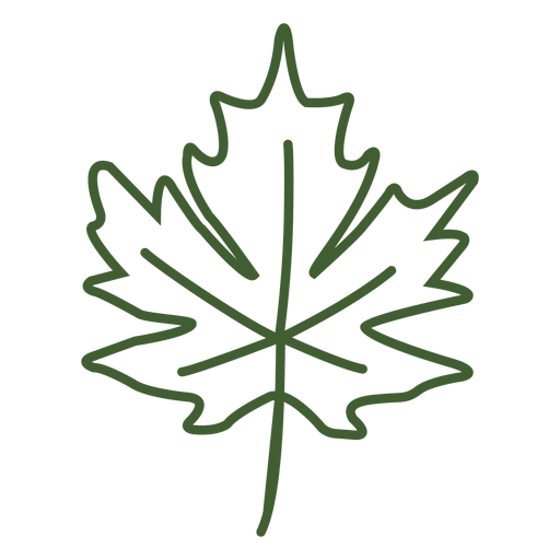 Flat Maple Leaf Icon