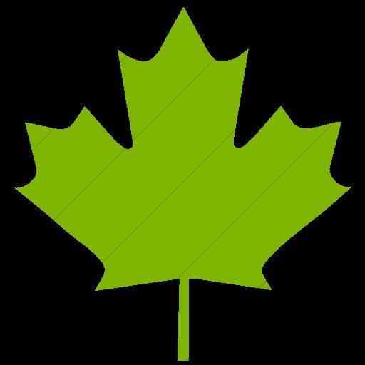 Simple Green Classica Maple Leaf Icon