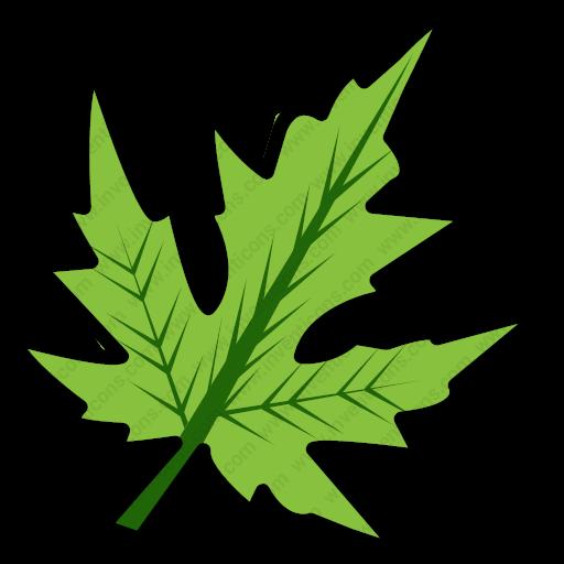 Download Branch,easter,ecology,green,leaf,nature,spring,leaves