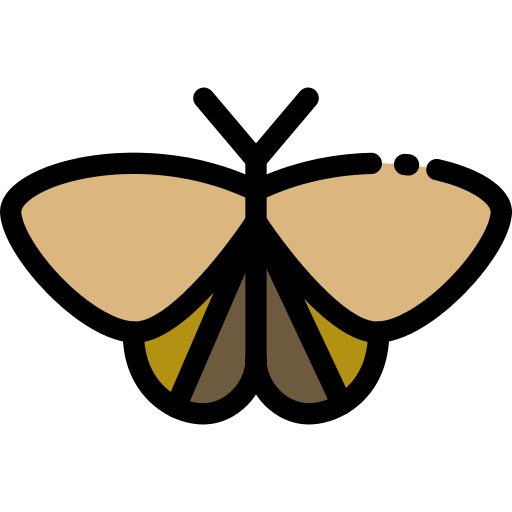 Moth Png Icon