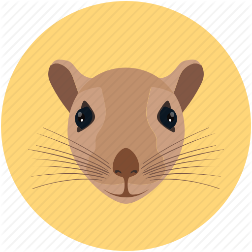 Animal, Animal Face, Mouse, Rat, Raton, Rodent Icon