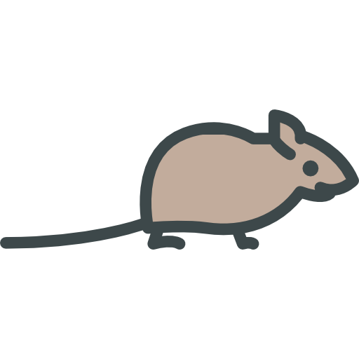 Rodent, Wild Life, Animal Kingdom, Mouse, Animals, Zoo Icon