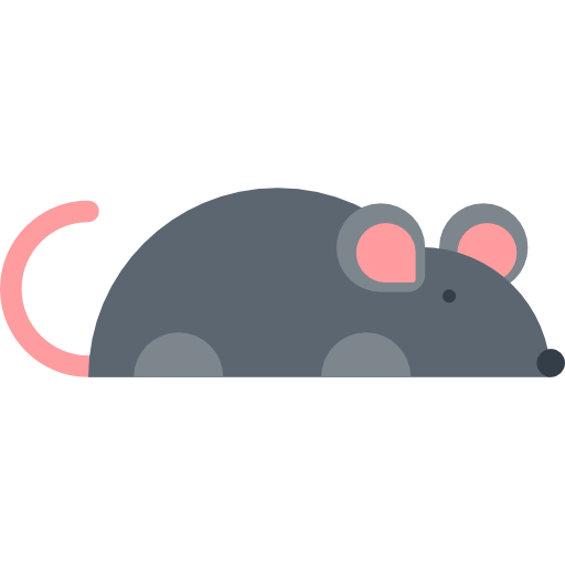 Wildlife, Mammal, Pet, Animal Kingdom, Rodent, Mouse, Animals Icon