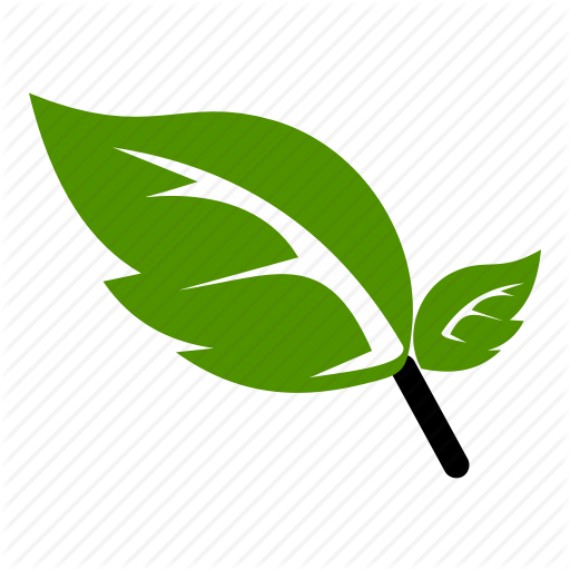 Flower, Green, Leaf, Natural, Nature Icon