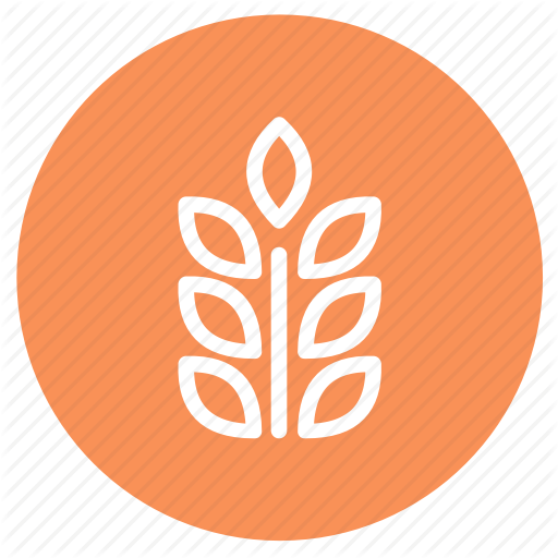 Allergens, Corn, Food, Grain, Plant, Seed, Wheat Icon
