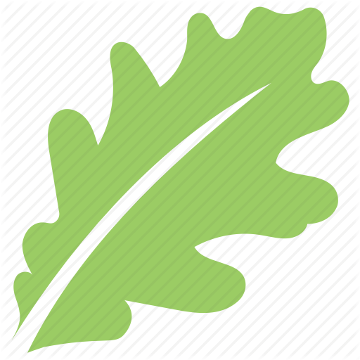 Green Leaf, Leaf, Leaf Design, Leaf Shape, Oak Leaf Icon