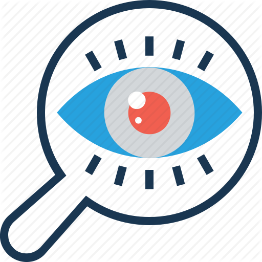 Magnifier, Observation, Search, Strategic Vision, Vision Icon