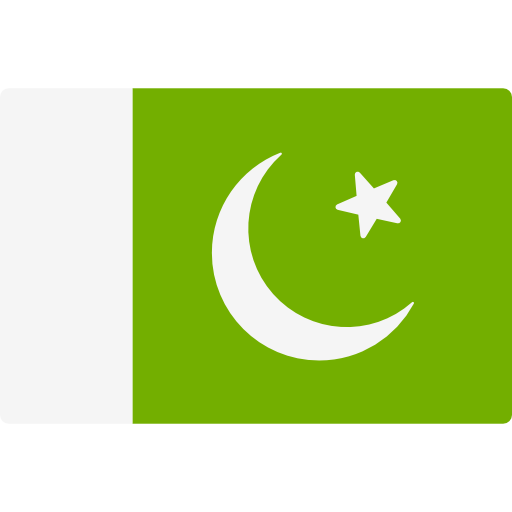 Nation Flat Olive Icon