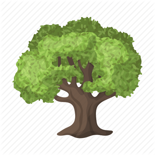 Grove, Leaf, Olive Tree, Plant, Plantation Icon