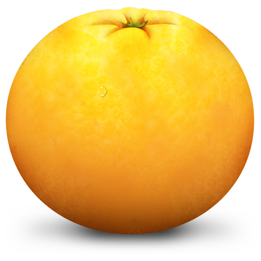 Orange Icon Paradise Fruits Iconset Artbees