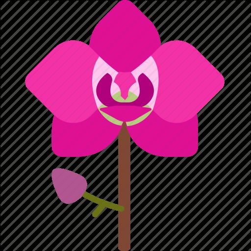 Floral, Florist, Flower, Garden, Nature, Orchid Icon
