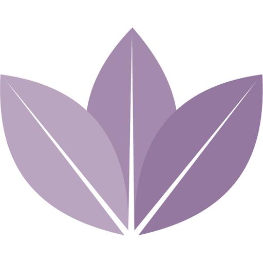 Romeo Juliette Spa Treatment Orchid Thai Massage