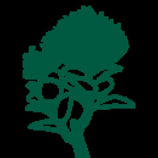 Get Outdoors Sierra Club