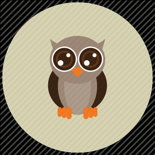 Animals, Big Eyes, Cute, Night, Owl Icon