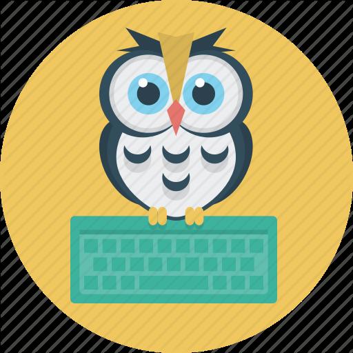 Education, Keyboard, Learning, Owl Icon