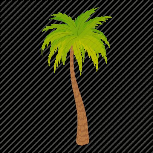 Cartoon, Floral, Green, Oil, Palm Tree, Palmtree, Tree Icon