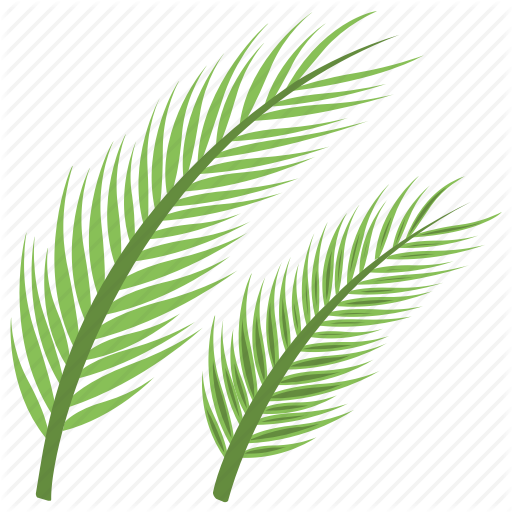 Christian Holiday, Holy Feast, Olive Branches, Palm Sunday, Sunday