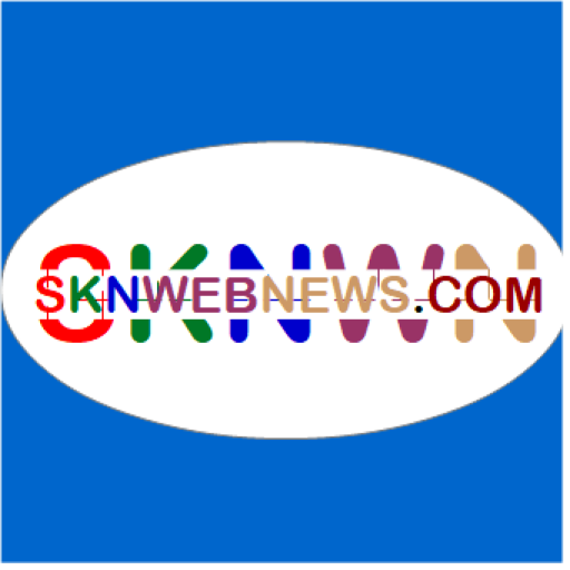 Cropped Sknwebnews Icon Color