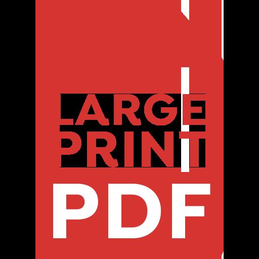 Large Print Pdf Icon Disability Law Service