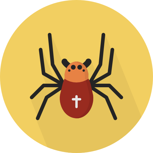 Insect, Spider, Animals Icon