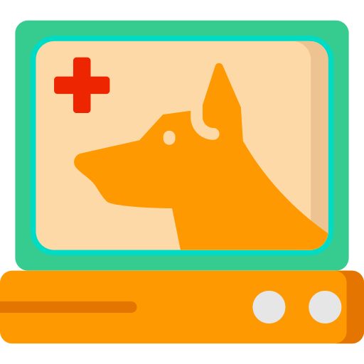Cardiogram Pet Png Icon