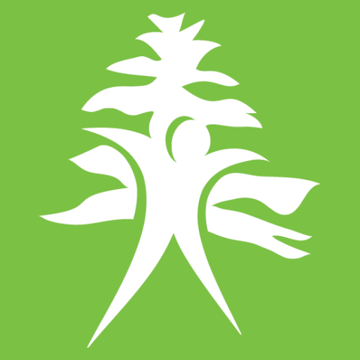 Cropped Site Icon Cypress Physical Therapy