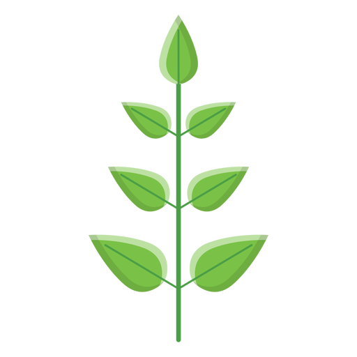 Spa Leaves Icon