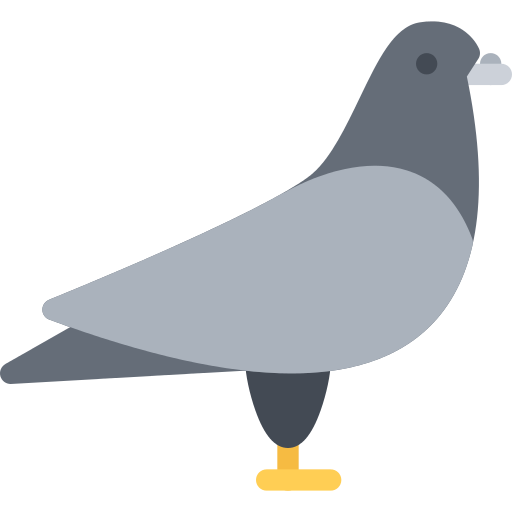 Pigeon Png Icon