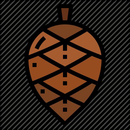 Autumn, Cone, Nut, Pine, Tree Icon
