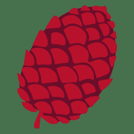Pine Cone Illustration