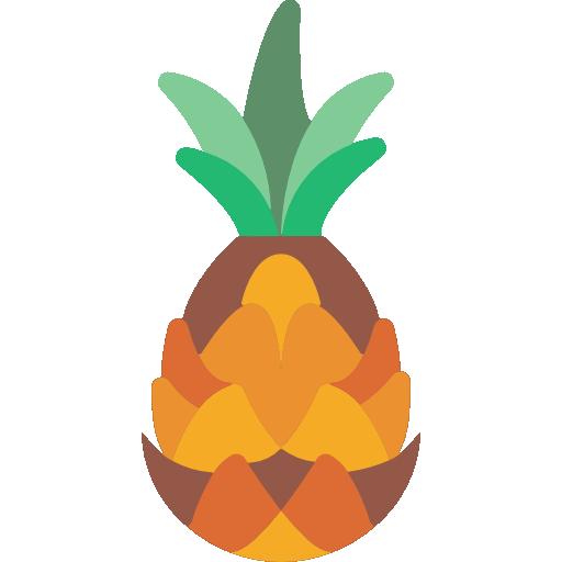 Pineapple Icon Gastronomy Smashicons