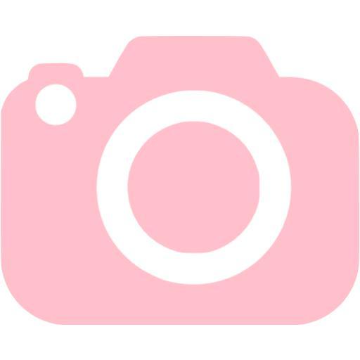 Pink Slr Camera Icon