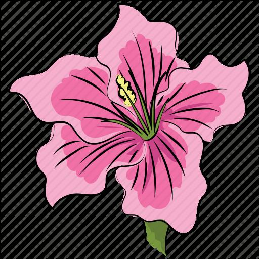 Azalea, Azalea Flower, Beautiful, Beauty, Flower, Pink, Pink