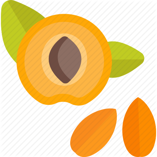 Food, Herbs, Peach, Pit Icon