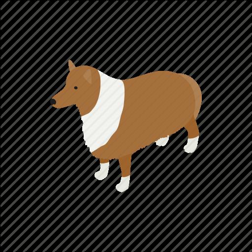 Animal, Blog, Canine, Collie, Dog, Isometric, Pet Icon