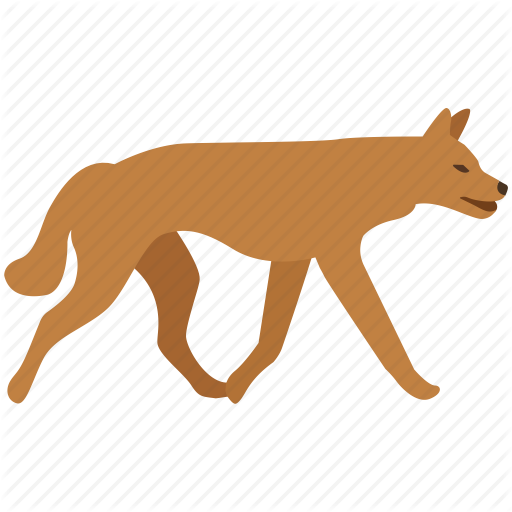 Australia, Canine, Dingo, Dog, Feral, Fox, Wild Icon