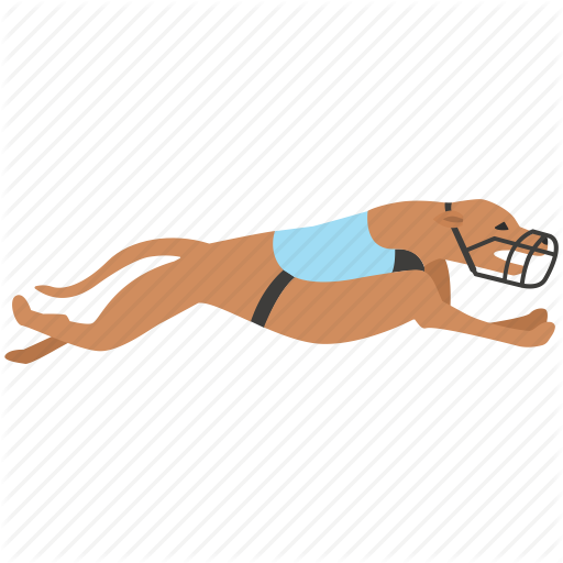 Dog, English, Grayhound, Greyhound, Hound, Races, Racing Icon
