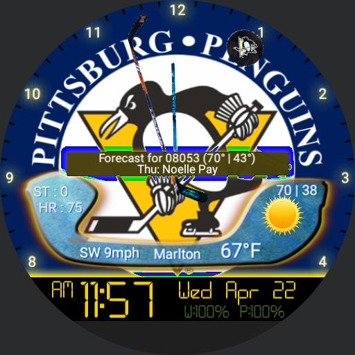 Pittsburgh Penguins For Moto
