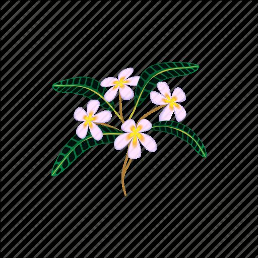 Beauty, Blossom, Cartoon, Flower, Nature, Plumeria, Tropical Icon