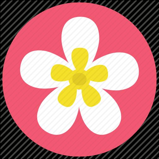 Beauty, Flower, Frangipani, Plant, Plumeria, Spa, Wellness Icon
