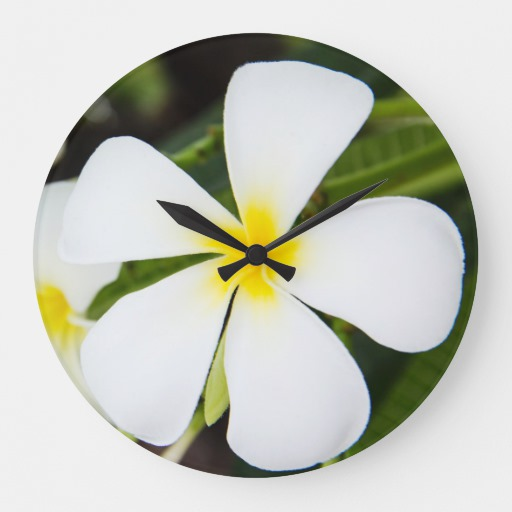 Plumeria Flower Template Printable Joy Studio Design