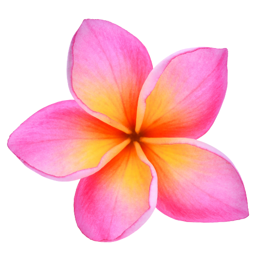 Plumeria Png Images In Collection