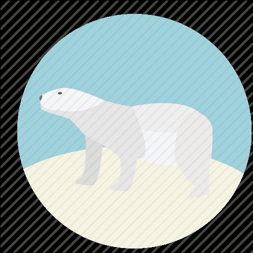 Animal, Bear, Nature, Polar, Polar Bear, White, Wildlife Icon