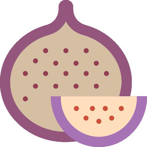 Pomegranate Icon Gastronomy Smashicons