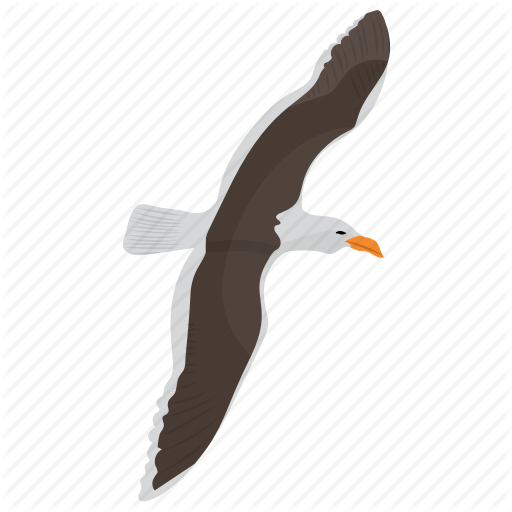 Bird, Erne, Flying Eagle, Prey Bird, Sea Eagle Icon