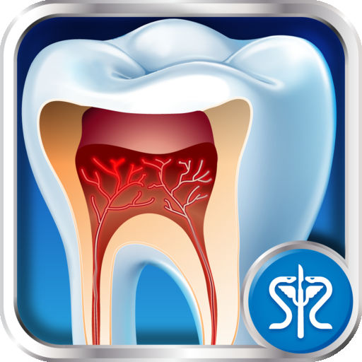Surgery Squad's Virtual Root Canal Procedure