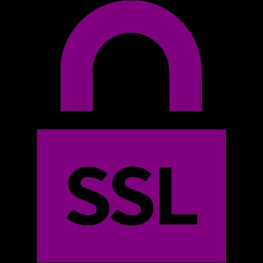 Purple Ssl Badge Icon